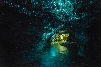 Glowworms Cave, New Zealand Image credits: waitomo.com