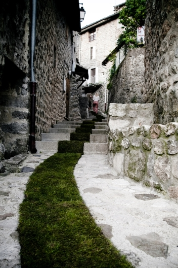 green-carpet3