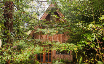 woodland home 4