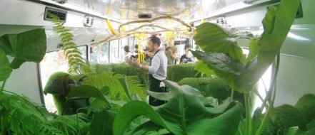 Forest-Bus-in-Taipei-4-889x385